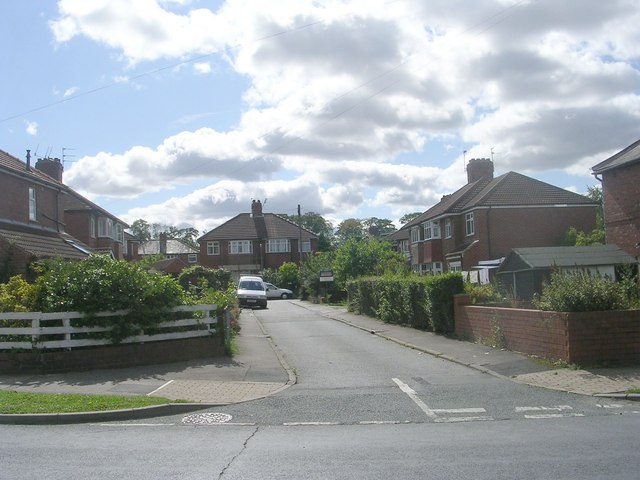 Waynefleet Grove - Millfield Lane