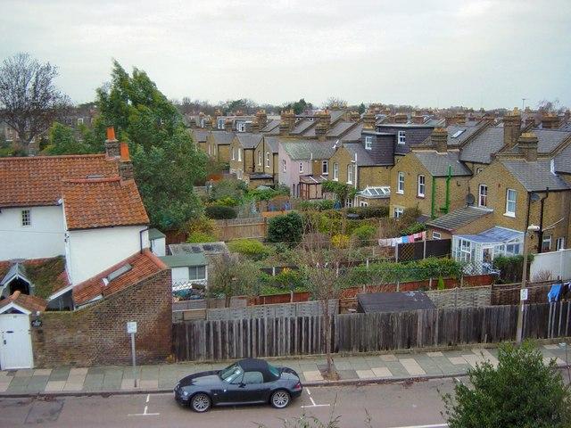 Gardens of Radnor Gardens - a rooftop view