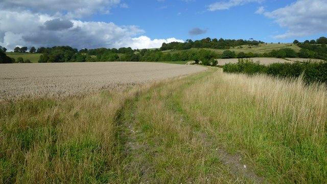 Minterne Parva, Dorset: the outside track