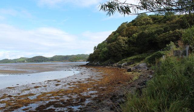 Shoreline at Crinan Ferry