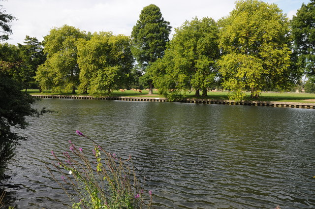 The Thames passing Home Park