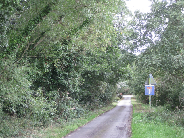 Southeast end of Marsh Lane