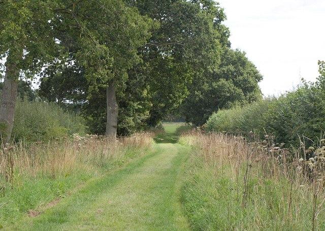 Track near Wedhampton
