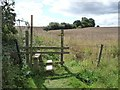 SE3936 : Stile at edge of oil seed rape field by Christine Johnstone