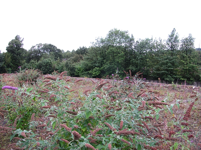 Derelict land, Edinburgh Road