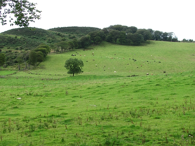 Gormyre Hill