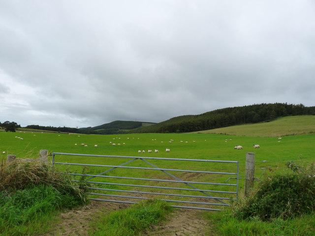 Sheuchan Hill