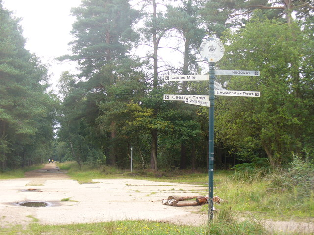 Upper Star Post, Swinley Forest