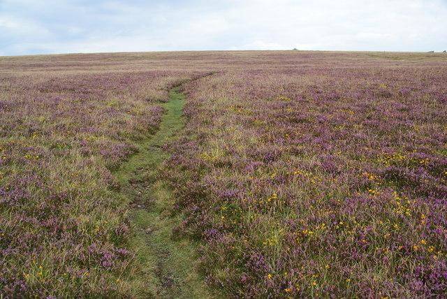 Path to Carn Briw