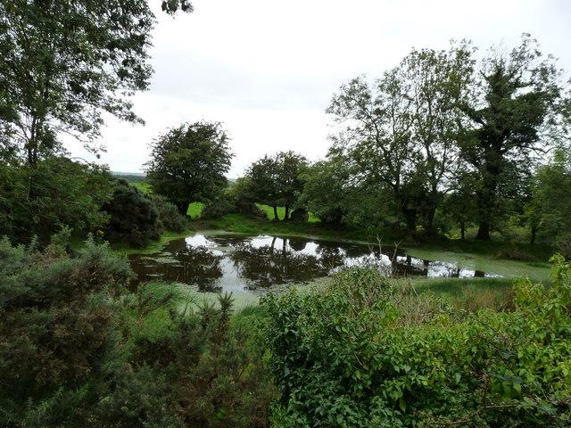 Chlenry Pond
