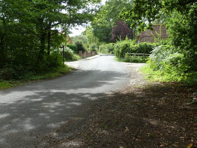 Severals Road approaching Bepton Common from the north
