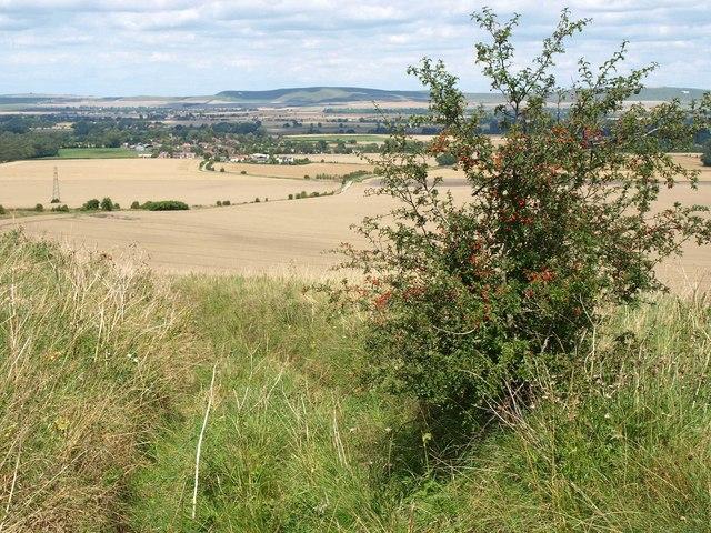 Bridleway to Chirton