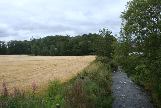 Barley by the Urie