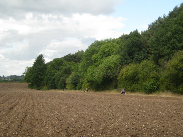 A family walk by Sixteen Acre Wood
