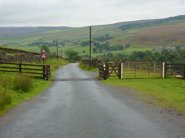 Cattle grid on Strang Lane
