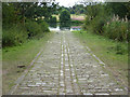 SK6274 : Clumber slipway by Richard Croft