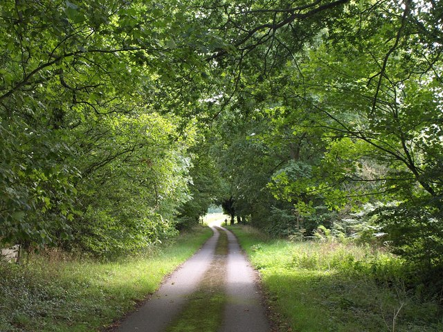 Bridleway to Hatfield Farm