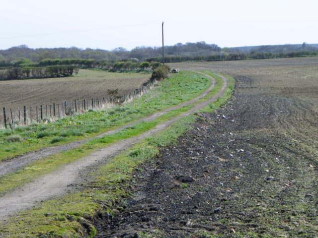 Bridleway near Longhirst