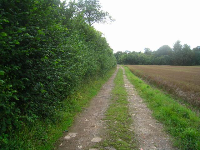 Farm track & footpath