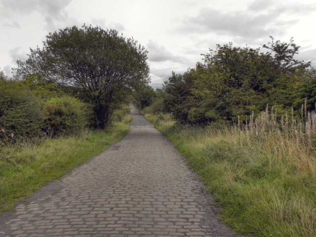 Engine Lane