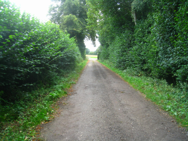 Approach to Malshanger Lane