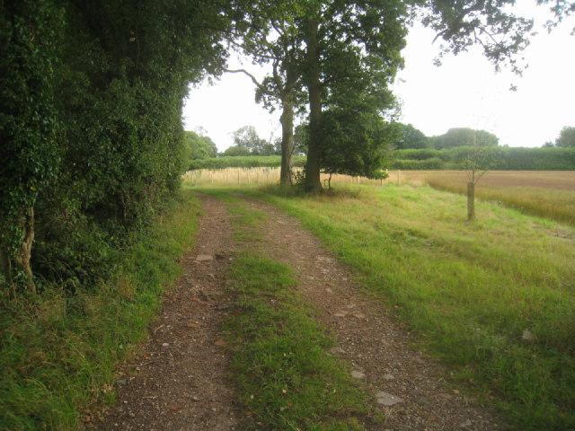 Farm track & path