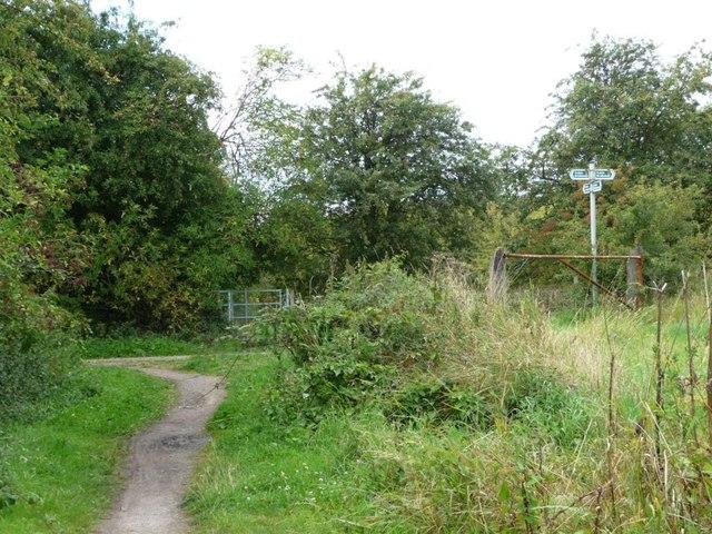 Bridleway and footpath junction