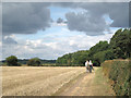 SP2379 : A Sunday morning walk from Berkswell  by Robin Stott