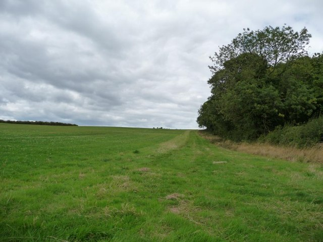 Large field west of Barnbow Lane