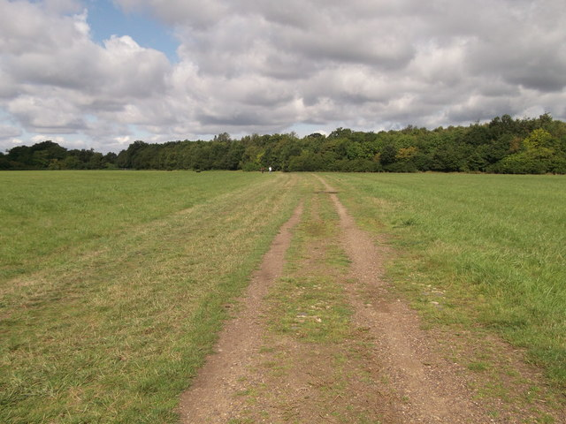 Footpath to Mazzard Wood