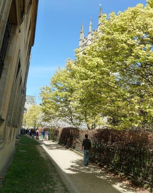 Path from Christ Church to Merton Street