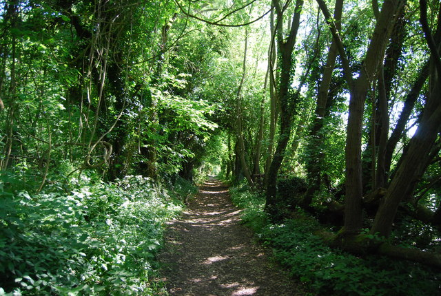 Byway to Winfield Lane