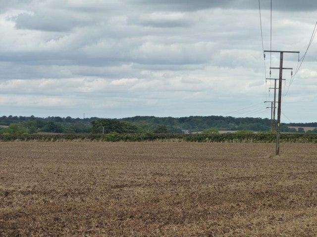 Telegraph wires crossing a bare field