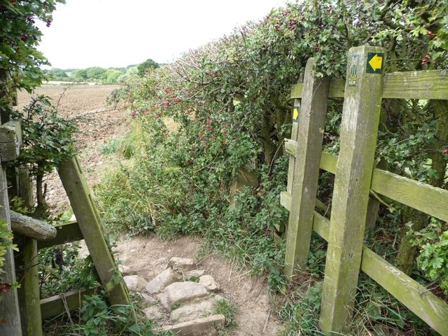 Waymarked gap in the hedge, the Leeds Country Way