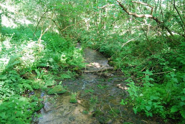 Stream in Brook Wood