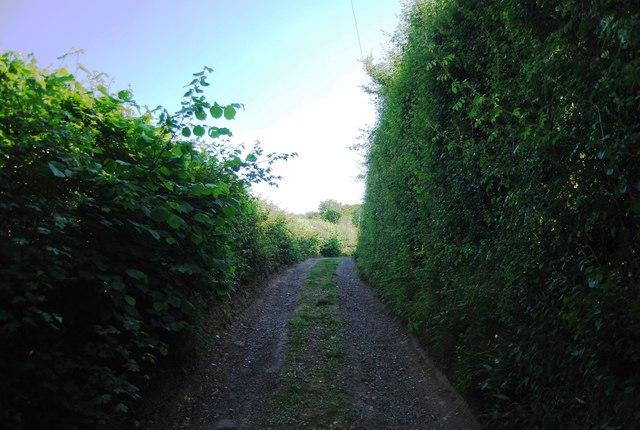 Footpath to Yopps Green
