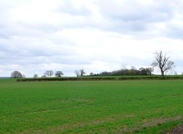 Countryside near Moreton in the Marsh