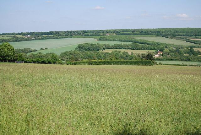 Grassy fields near Yopps Green
