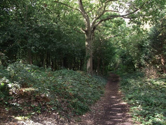 Warren Wood Close