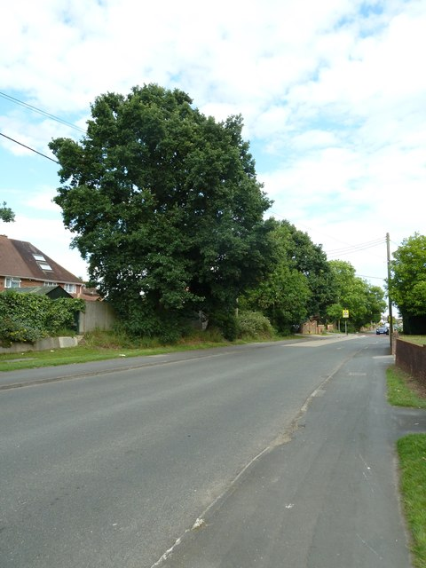 Mid section of Water Lane