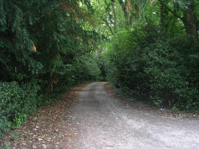 Buckstone Drive - Cliffe Drive