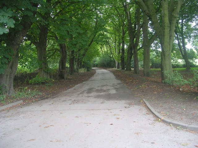 Rawdon Drive - Cliffe Drive