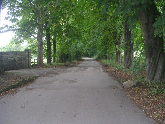 Cliffe Drive - viewed from Rawdon Drive