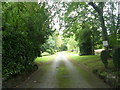 SE2039 : Driveway to Holmehurst - Cliffe Drive by Betty Longbottom