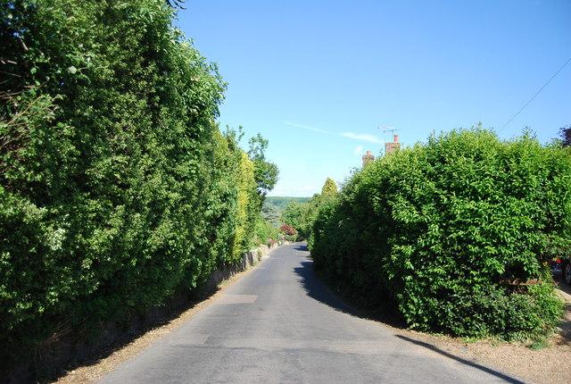 The Street, Plaxtol