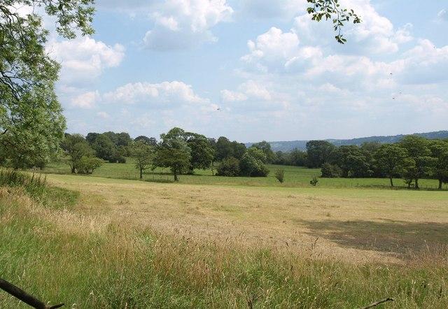 Farmland, Newall Carr Side