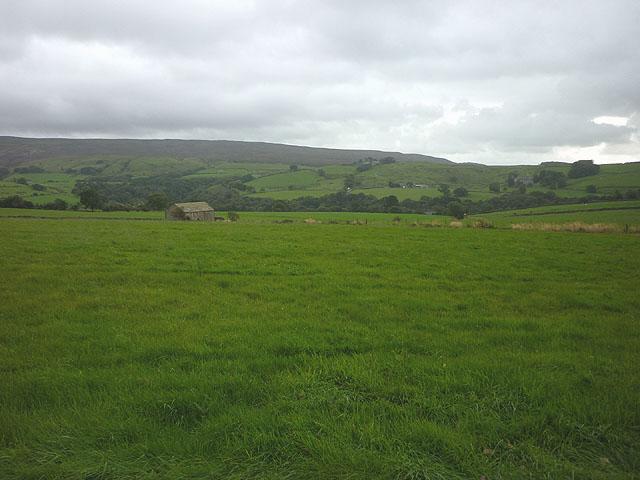Pasture above Crossgill