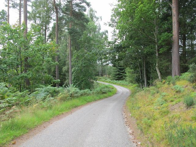 Road Near Dun Earn