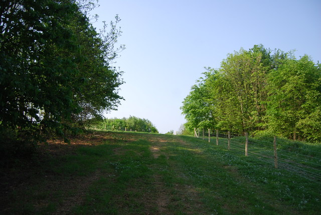Footpath across abandoned golf course