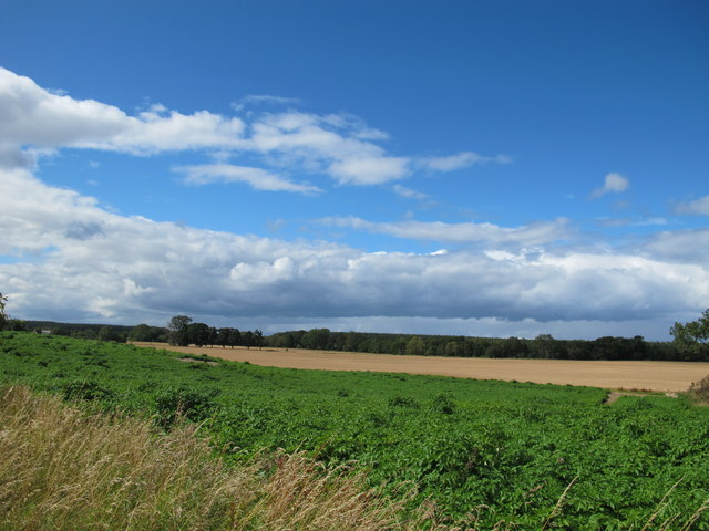 Farmland Near Earlsmill